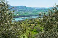 viadeicontrabbandieri-lago-ulivi